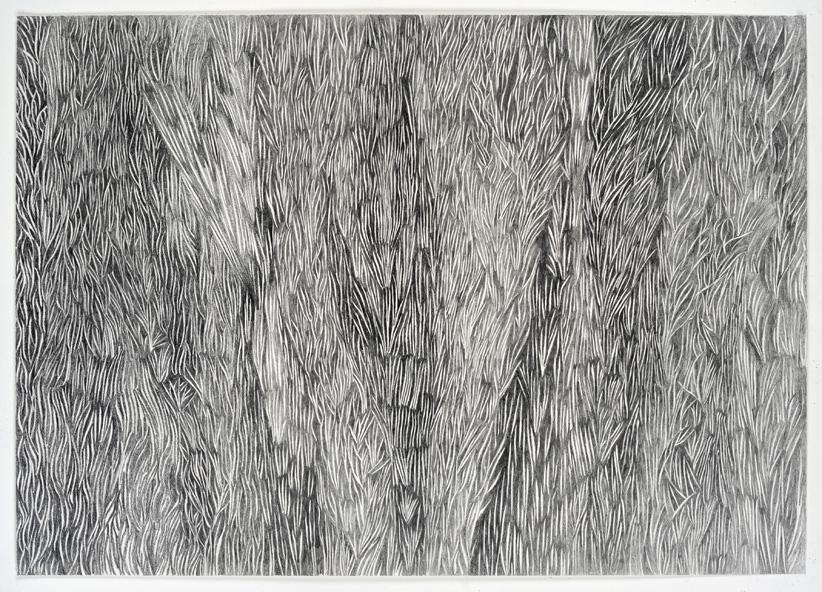 Christine Crozat, Dans les champs N°04, 103x71cm dessin 2018 ©JLLosi