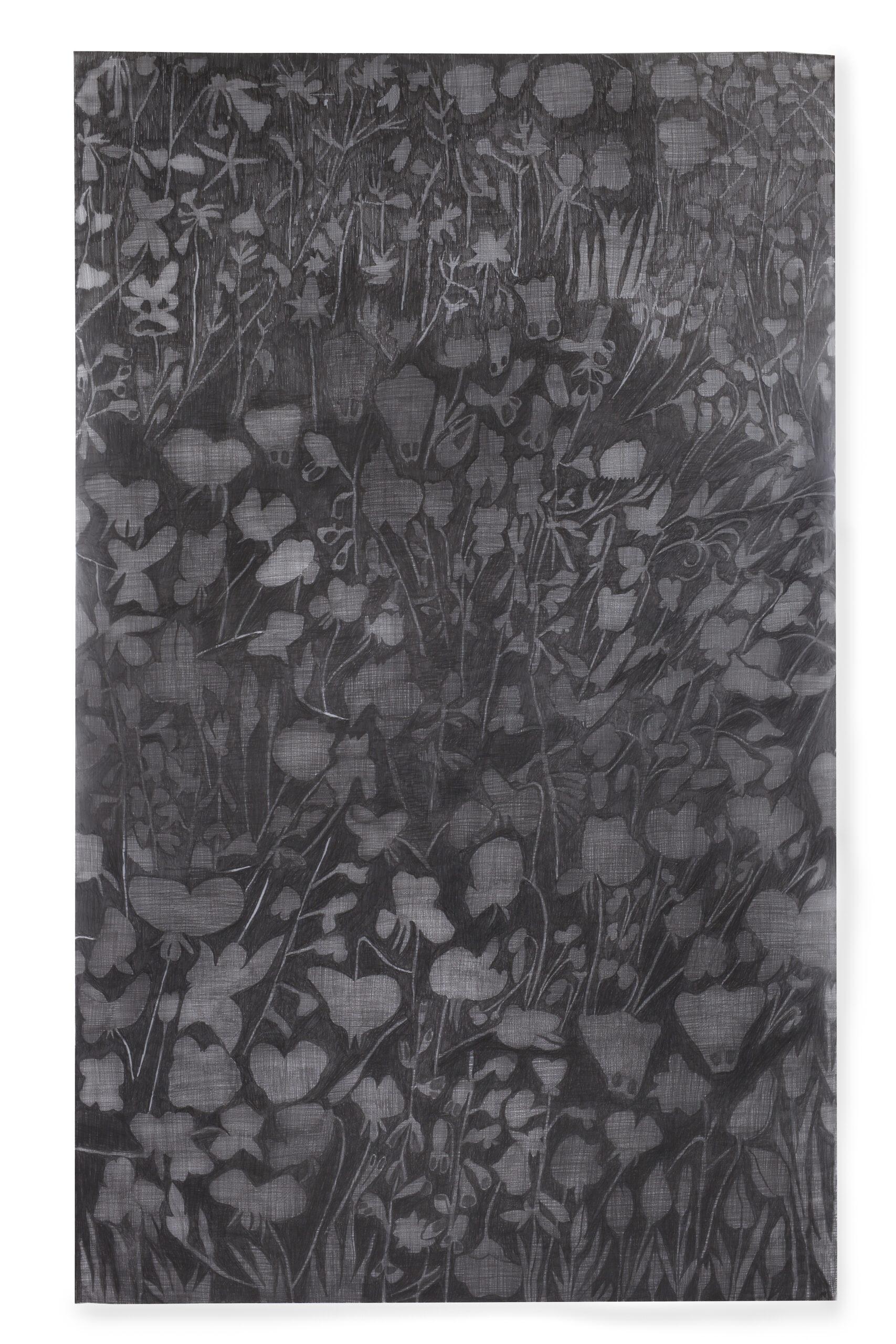 Christine Crozat, Jardin noir, 2021, dessin sur calque © Bertrand Hugues